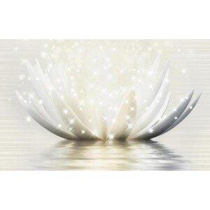 Голден Тайл Magic Lotus 19Г331